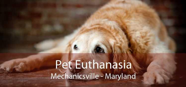 Pet Euthanasia Mechanicsville - Maryland