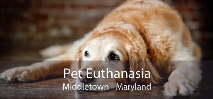 Pet Euthanasia Middletown - Maryland