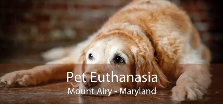 Pet Euthanasia Mount Airy - Maryland