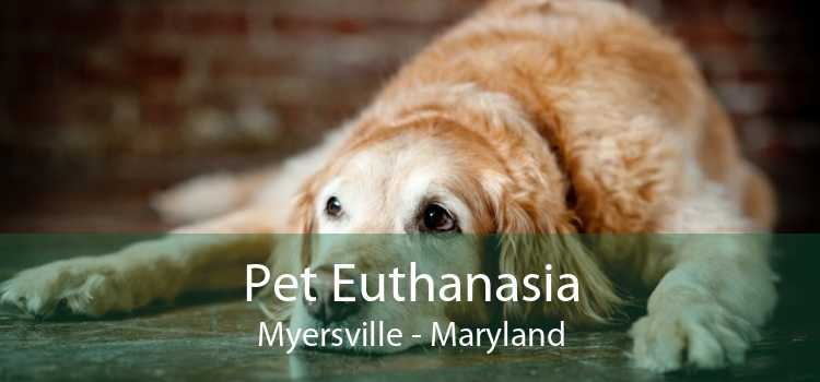 Pet Euthanasia Myersville - Maryland