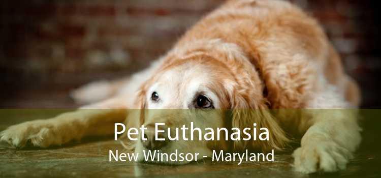 Pet Euthanasia New Windsor - Maryland