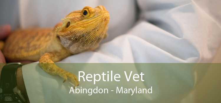 Reptile Vet Abingdon - Maryland