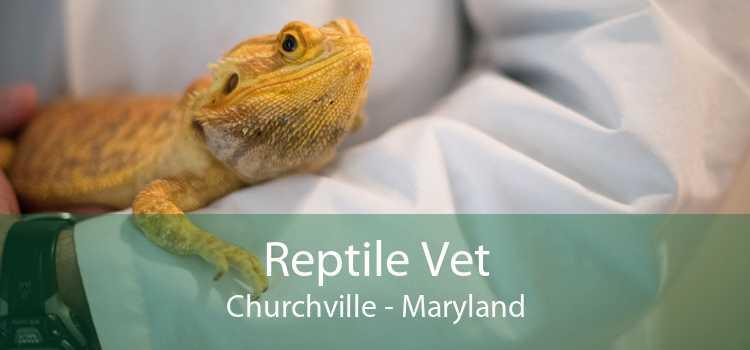 Reptile Vet Churchville - Maryland