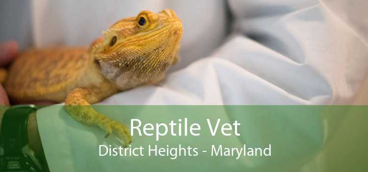 Reptile Vet District Heights - Maryland