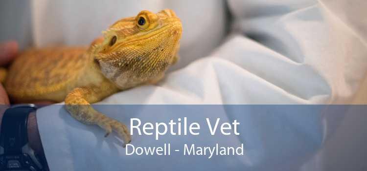 Reptile Vet Dowell - Maryland