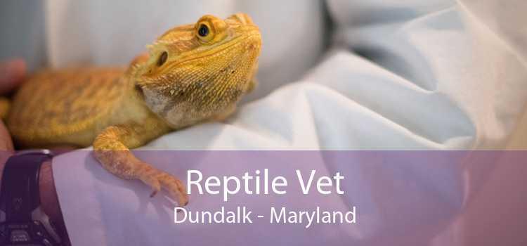 Reptile Vet Dundalk - Maryland