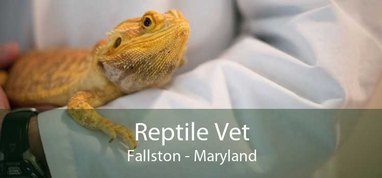 Reptile Vet Fallston - Maryland