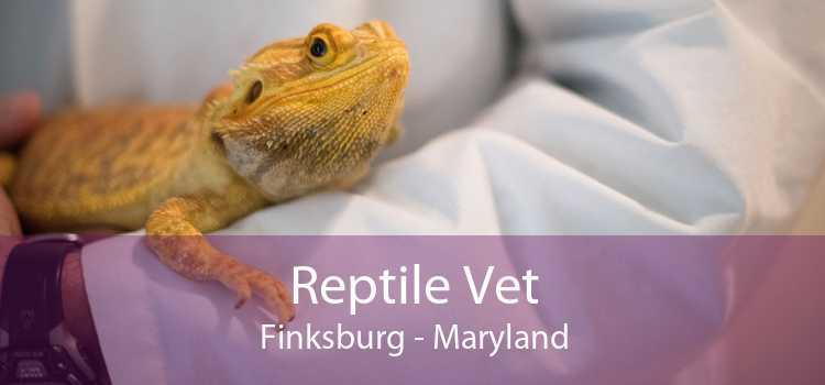 Reptile Vet Finksburg - Maryland