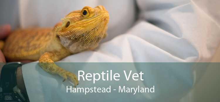 Reptile Vet Hampstead - Maryland