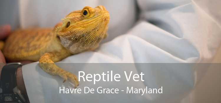 Reptile Vet Havre De Grace - Maryland