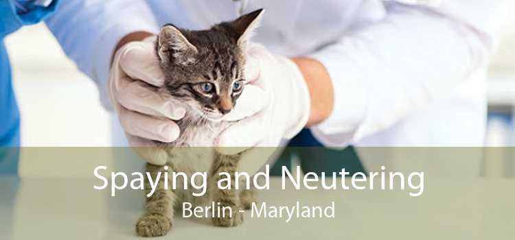 Spaying and Neutering Berlin - Maryland