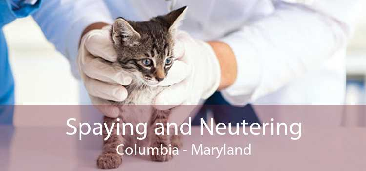 Spaying and Neutering Columbia - Maryland