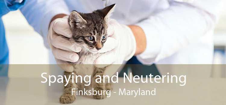 Spaying and Neutering Finksburg - Maryland