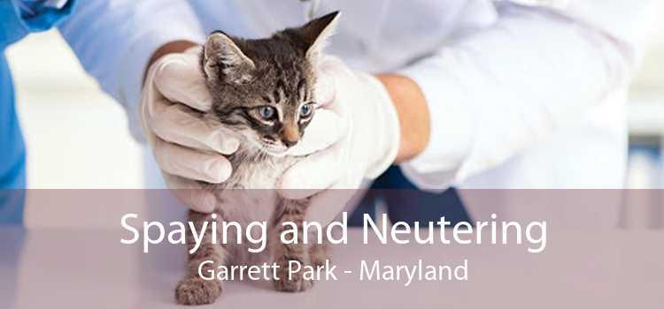 Spaying and Neutering Garrett Park - Maryland
