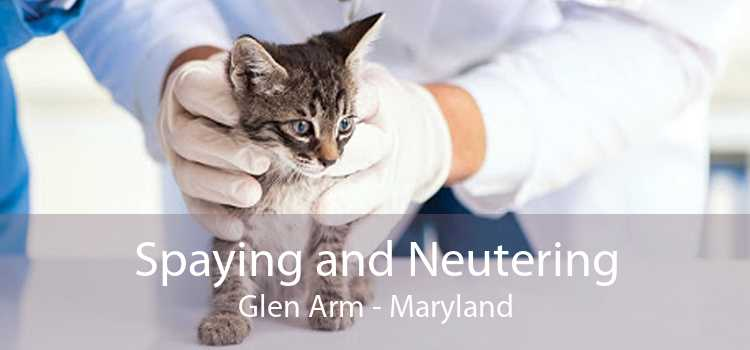 Spaying and Neutering Glen Arm - Maryland
