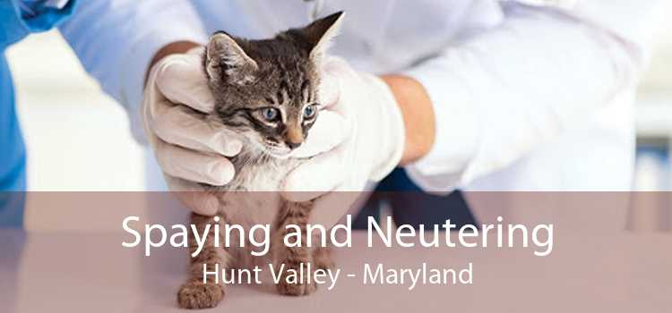 Spaying and Neutering Hunt Valley - Maryland