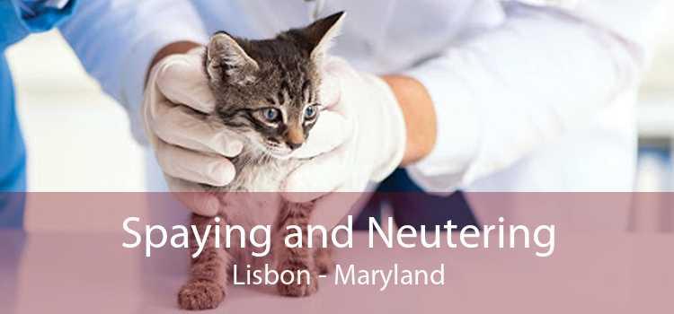 Spaying and Neutering Lisbon - Maryland