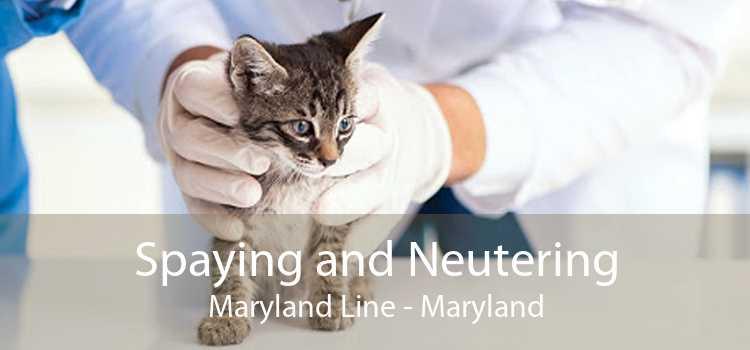 Spaying and Neutering Maryland Line - Maryland