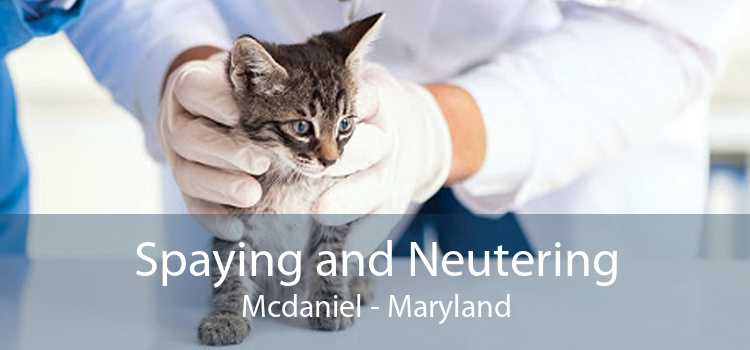 Spaying and Neutering Mcdaniel - Maryland