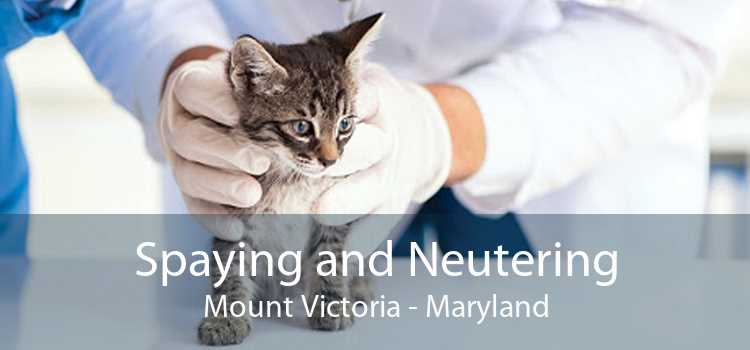 Spaying and Neutering Mount Victoria - Maryland