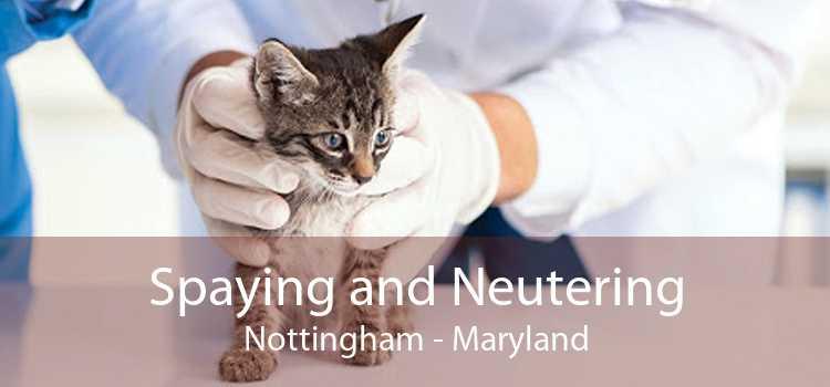 Spaying and Neutering Nottingham - Maryland