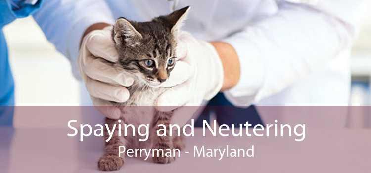 Spaying and Neutering Perryman - Maryland