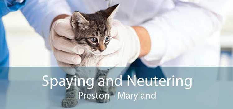 Spaying and Neutering Preston - Maryland
