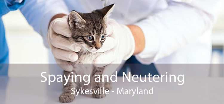 Spaying and Neutering Sykesville - Maryland