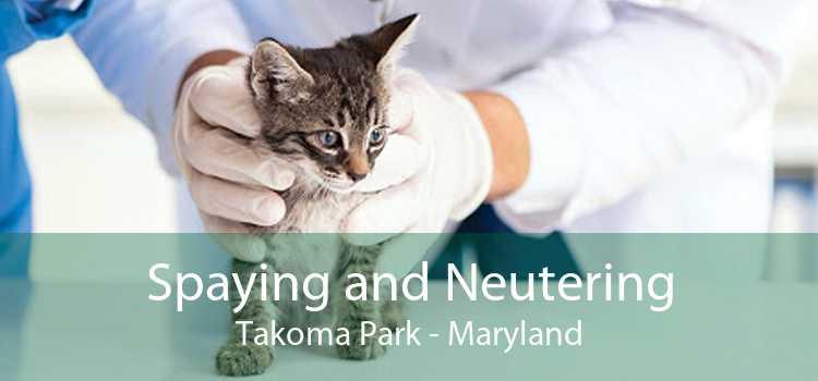 Spaying and Neutering Takoma Park - Maryland