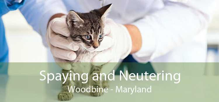 Spaying and Neutering Woodbine - Maryland