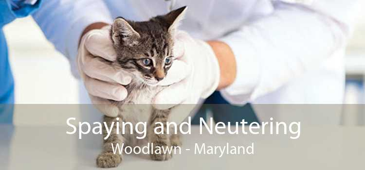 Spaying and Neutering Woodlawn - Maryland