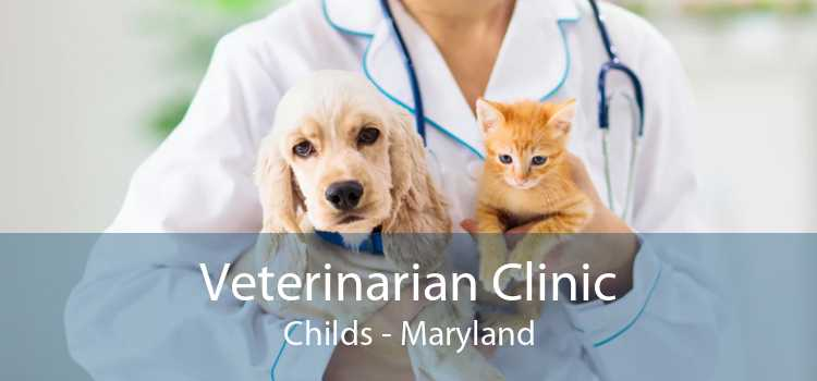 Veterinarian Clinic Childs - Maryland