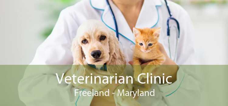 Veterinarian Clinic Freeland - Maryland