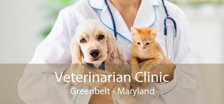 Veterinarian Clinic Greenbelt - Maryland