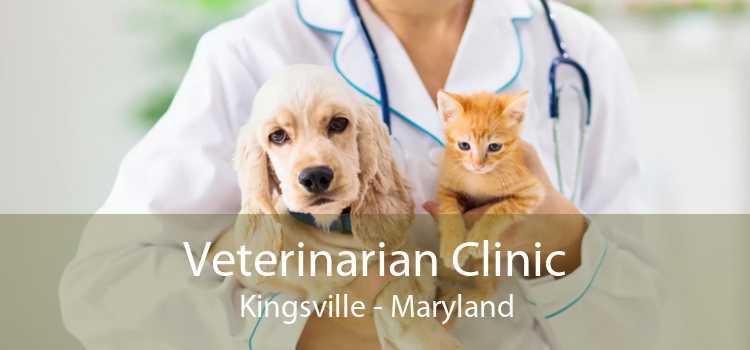 Veterinarian Clinic Kingsville - Maryland
