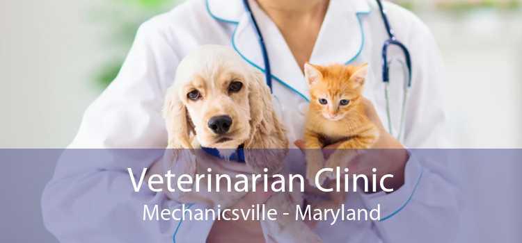 Veterinarian Clinic Mechanicsville - Maryland